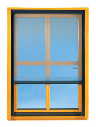 Komarnik na lesenem oknu