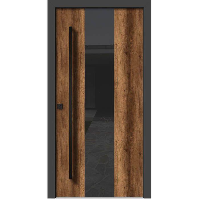 alu-les-vhodna-vrata-ha-306.jpg